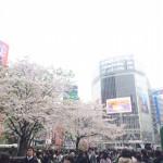 【イベントボランティア募集】と、東京 3Days